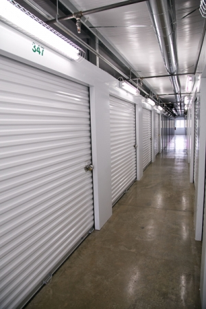 Rex Storage - Photo 7
