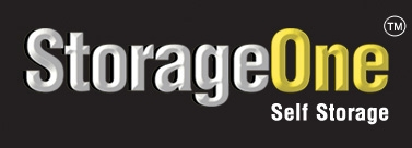 StorageOne - Regena - Photo 5