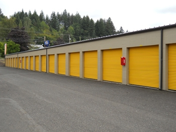 Iron Guard Storage - Camas - Photo 2