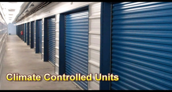 Centerville Self Storage - Houston Lake - Photo 5