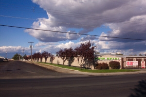 National Storage Centers - East Francis - Photo 2