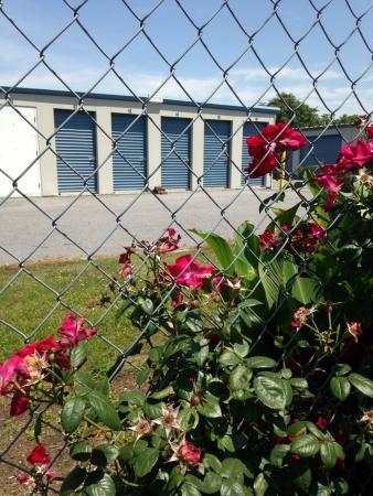G & N Storage - Photo 4