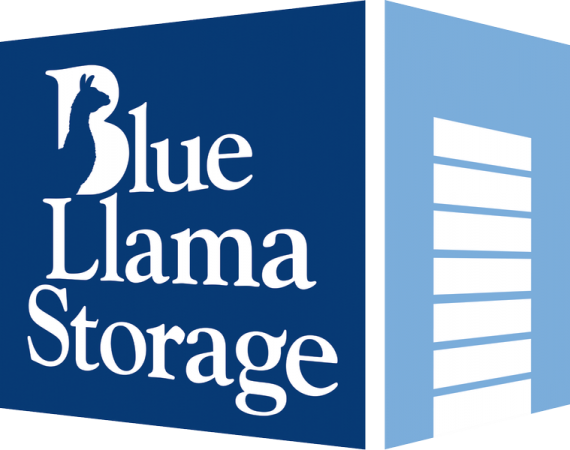 Blue Llama Storage - Buda - Photo 1