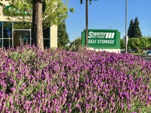 Superior Self Storage - Rancho 1